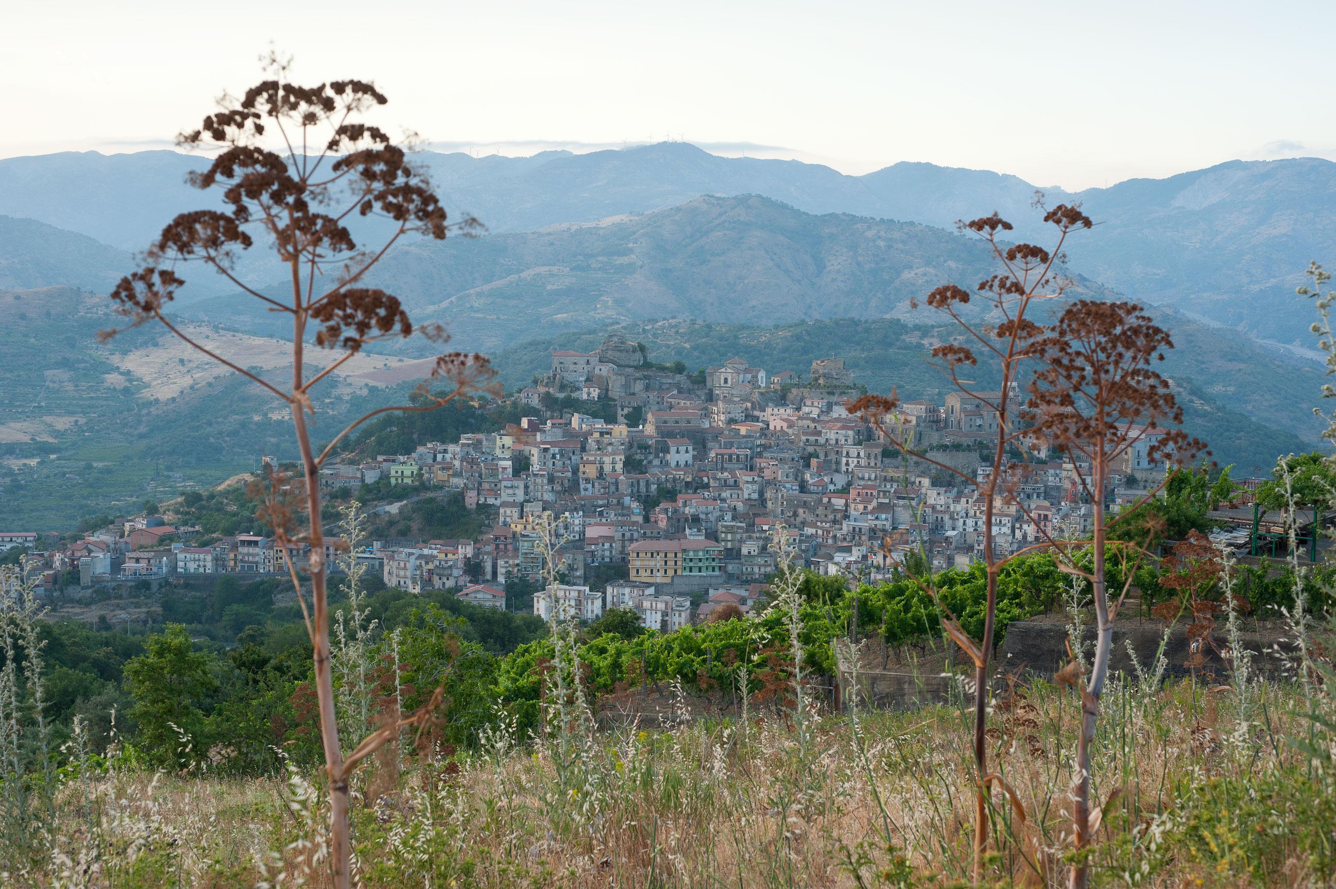 1_Sicily_Castiglione_Sicilia_2310